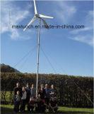 110V 220V on Grid 2kw Wind Turbine Price