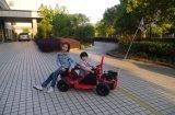 EPA Approve Red 80cc 49cc Mini Go Kart