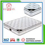 2015 Sweet Dreams Home Furniture Pocket Coil Spring Mattress Rolled in a Box