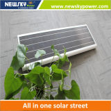 China Suppliers 60W Solar Street Lamp