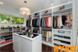 2017 Elegant Customized High Glossy Walk-in Closet (BY-W-32)