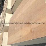 Veneer Poplar Plywood Timber (GL1515)