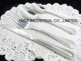 Stainless Steel Spoon for Knife Steak Knife Tableware Set