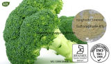 High Quality Natural Broccoli Extract 0.1%-98% Sulforaphane
