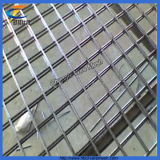 China Zinc Plated Galvanized Welded Wire Mesh Panel
