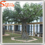 China Supply Plastic Artificial Live Banyan Ficus Plant Tree