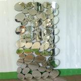Special Design Modern Decorative Mirror (LH-000550)