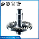 OEM Customized Forging Transmission Gears in Different Size