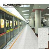 1200X600 Granite Series Porcelain Thin Tile (BHLP120601)