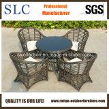 Outdoor Furniture Garden Furniture Set (SC-B8954)