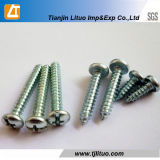 DIN7981 Galvanized Pan Head Self Tapping Screws