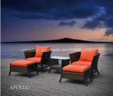 Outdoor Furniture /Patio Furniture/ Garden Furniture/Rattan Furniture Tl161