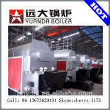 High Quality Packaged Coal Boiler Automatic Steam Boiler on Coal
