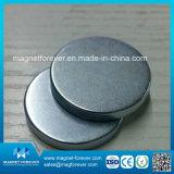 Rare Earth Permanent Neodymium Magnet N42 Magnet