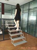 2015 New Style Multistage Folding Electric Step