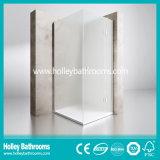 Pivot Door Ground Glass Single Door Selling Simple Shower Room (SE709M)