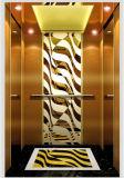Fashion Elevator Lift Passenger Cabin, Elevator Machine
