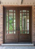 Steel Material Iron Door with Powder Coated Entry Door (UID-D100)