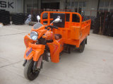 Hot Sale Gasoline Powered Trike Motorcycle