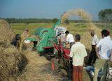 Paddy Rice or Wheat Thresher