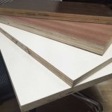 Plywood, Poplar, Hardwood Combi, Birch, Eucalypts, Commercial Plywood