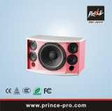 High Quality Single 10 3- Way Loudspeaker System for KTV Wise-101