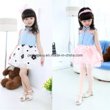 Wholesale Denim Girls Flower Princess Dress Cheap Price Inventory