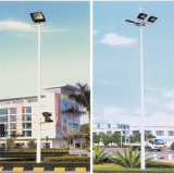 15m Painted Octagonal Lamp Posts