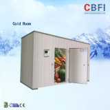 Cold Storage for Keep Fresh and Freezing