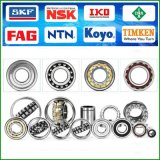 Hot Sale Famous Brand Bearings (SKF FAG INA TIMKEN)