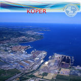 LCL Warehousing & Shipment From China to Koper by Carrier EMC