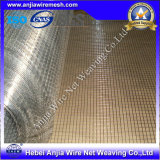 Electro Galvanized Welded Wire Mesh with (CE and SGS)