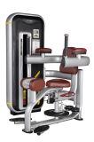 Torso Rotation/ Fitness Equipment/Body Building/ Gym Equipment