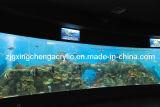 Large Transparent Aquarium Fish Tank