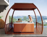 5 Capacity Luxury Design Outdoor Massage SPA SAA Ce Approved Hydro Hot Tub (M-3367)