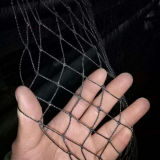 PP Knotless Anti Bird Net Anti Hail Net