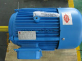 Three Phase GOST Electric Motor China Factory