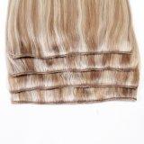 Human Hair Clip Hair Extension