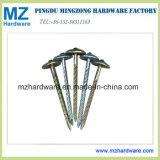 Zinc Plated Screw Shank Umbrella Head Roofing Nail