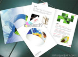 High Quality Advertising Flyers / Leaflet / Catalogue / Brochure printing With Full Color