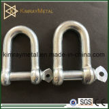 European Galvanized Commercial Type Dee Shackle
