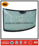 Car Glass Laminated Front Windshield for Benz