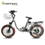 Beach Cruiser 750W Folding Ebike with Front/ Rear Rack