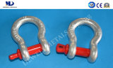 Hot Dipped Galv. Us Type Drop Forged G209 Anchor Bow Shackle