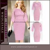 Fashion Girl Lace Spliced Career Apparel Bodycon Dress (6749)