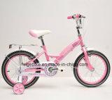 "New Product 12""/16""/20"" Pink Color Children Bike Girl Bike (FP-KDB-17062)"