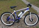 27 Speed Electric Mountain Bike Sports Bicycle with 8 Fun Motor