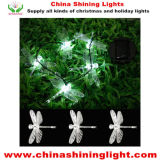 Holiday Garden White Color Decoration Lights