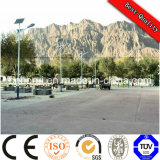Decorative Solar Street Light Fittings for Parks and Gardens