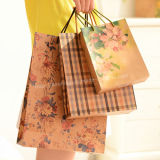 Colorful Kraft Paper Shopping Bag/Paper Gift Handbag